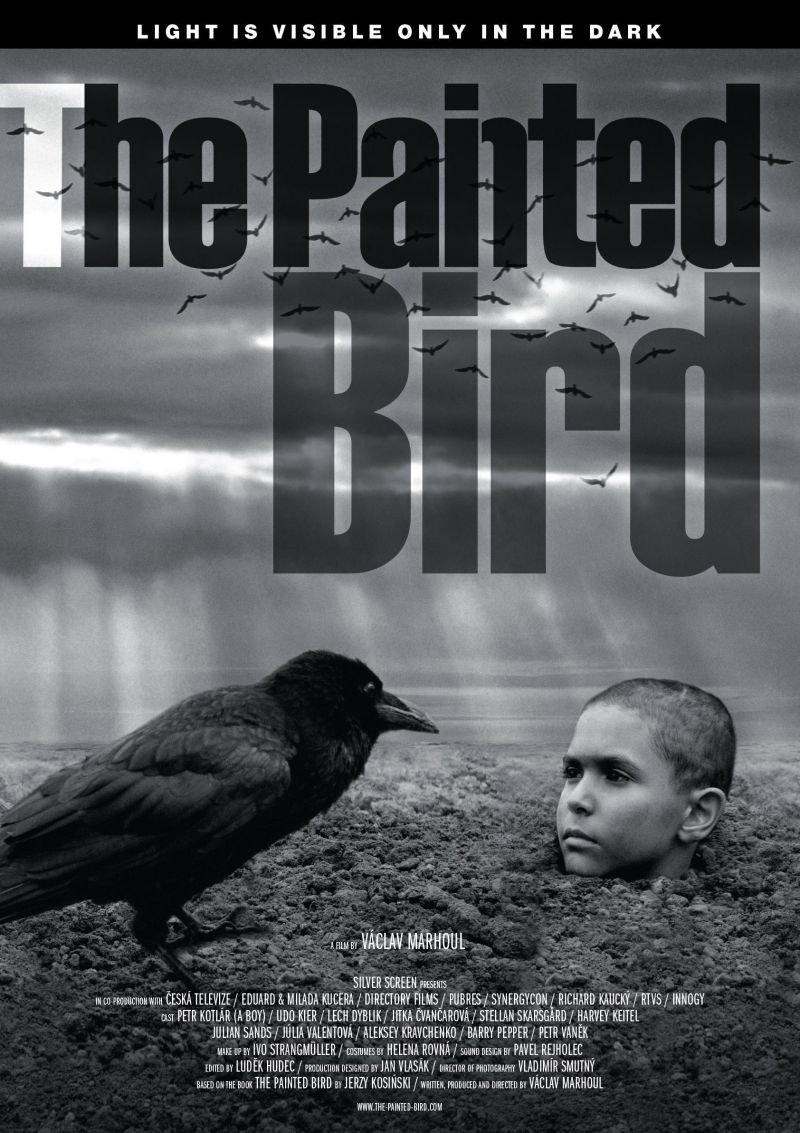 Painted Bird, The