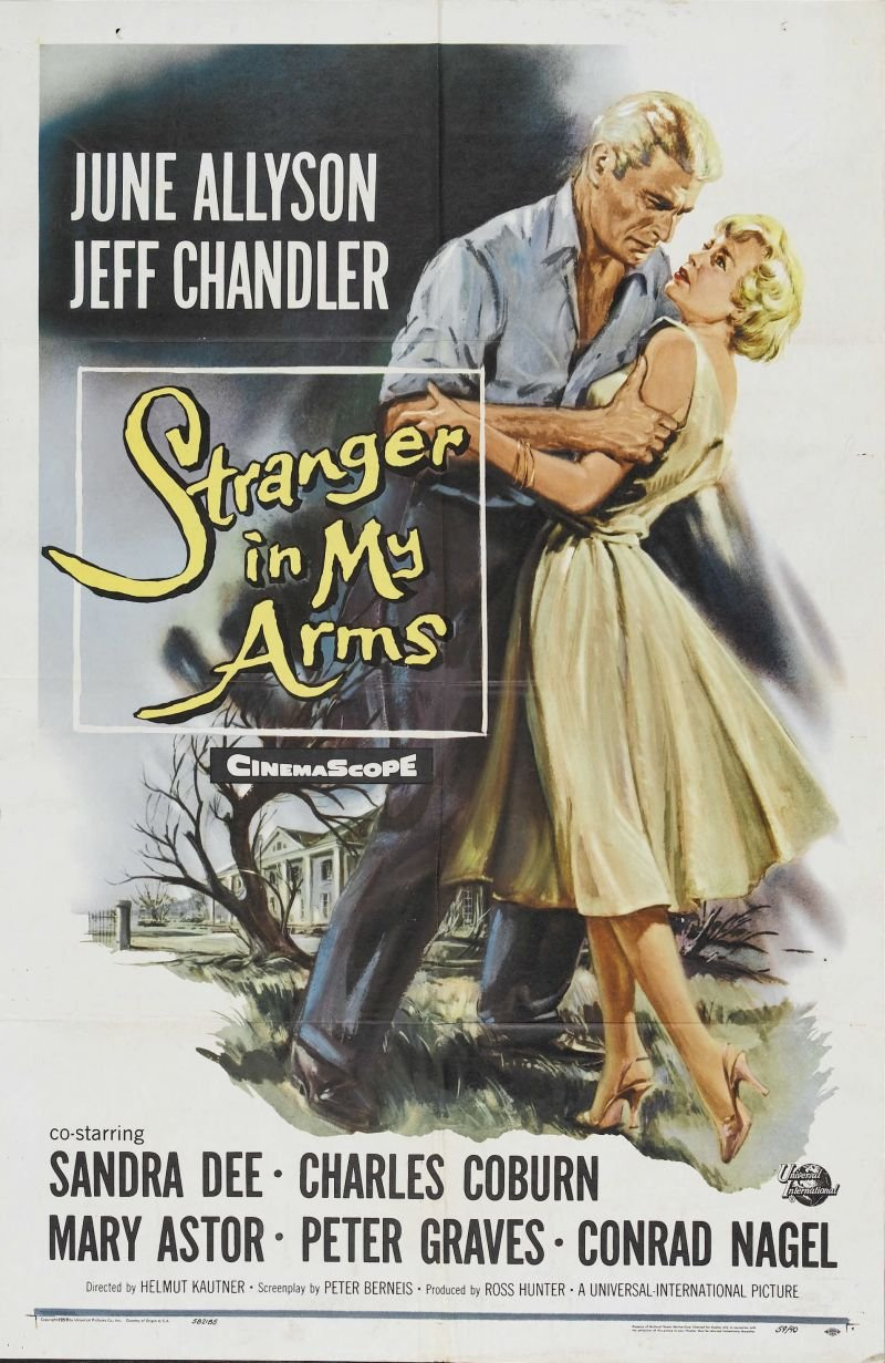 Stranger in My Arms, A