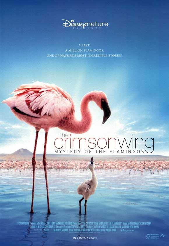Crimson Wing: Mystery of the Flamingos, The