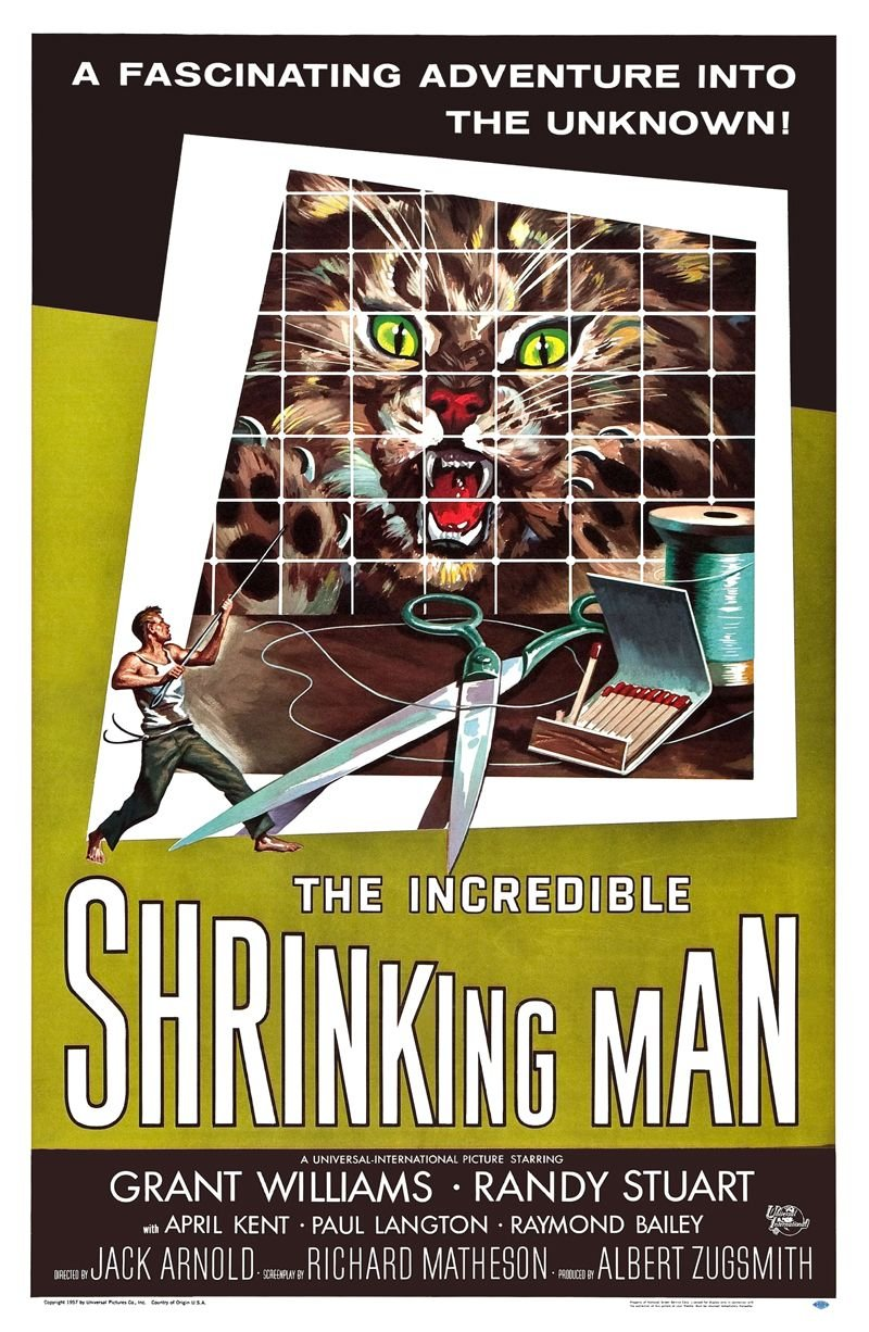 Incredible Shrinking Man, The